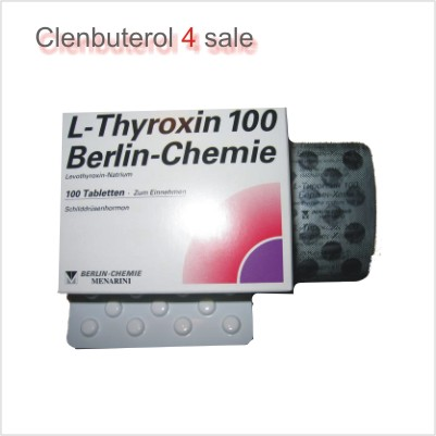 T4 L-Thyroxin 100